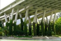 bridge-plants2